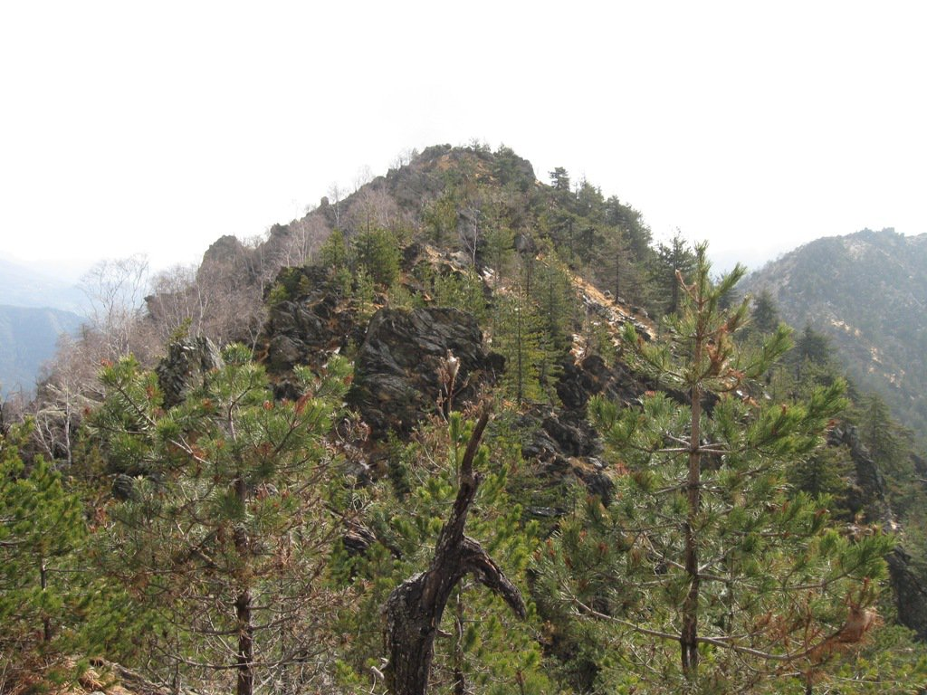 Cresta ovest Bellacomba