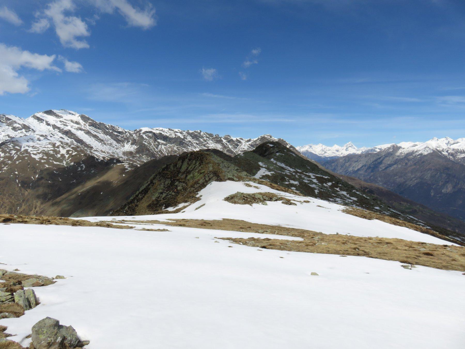 Dal Monte Gregorio