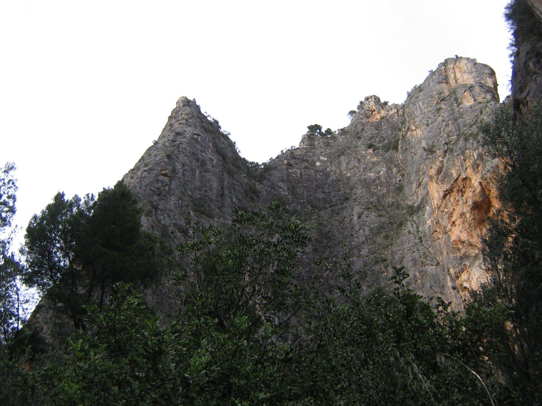 Puig de Sa Gubia Albahida 2016-04-15