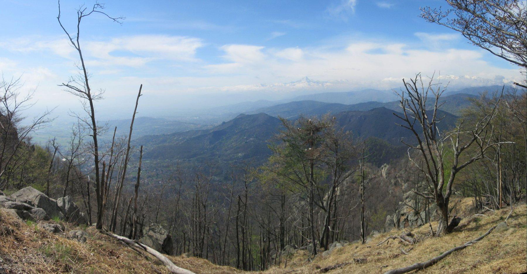 Panorama sul Monviso dal Colle della Bessa
