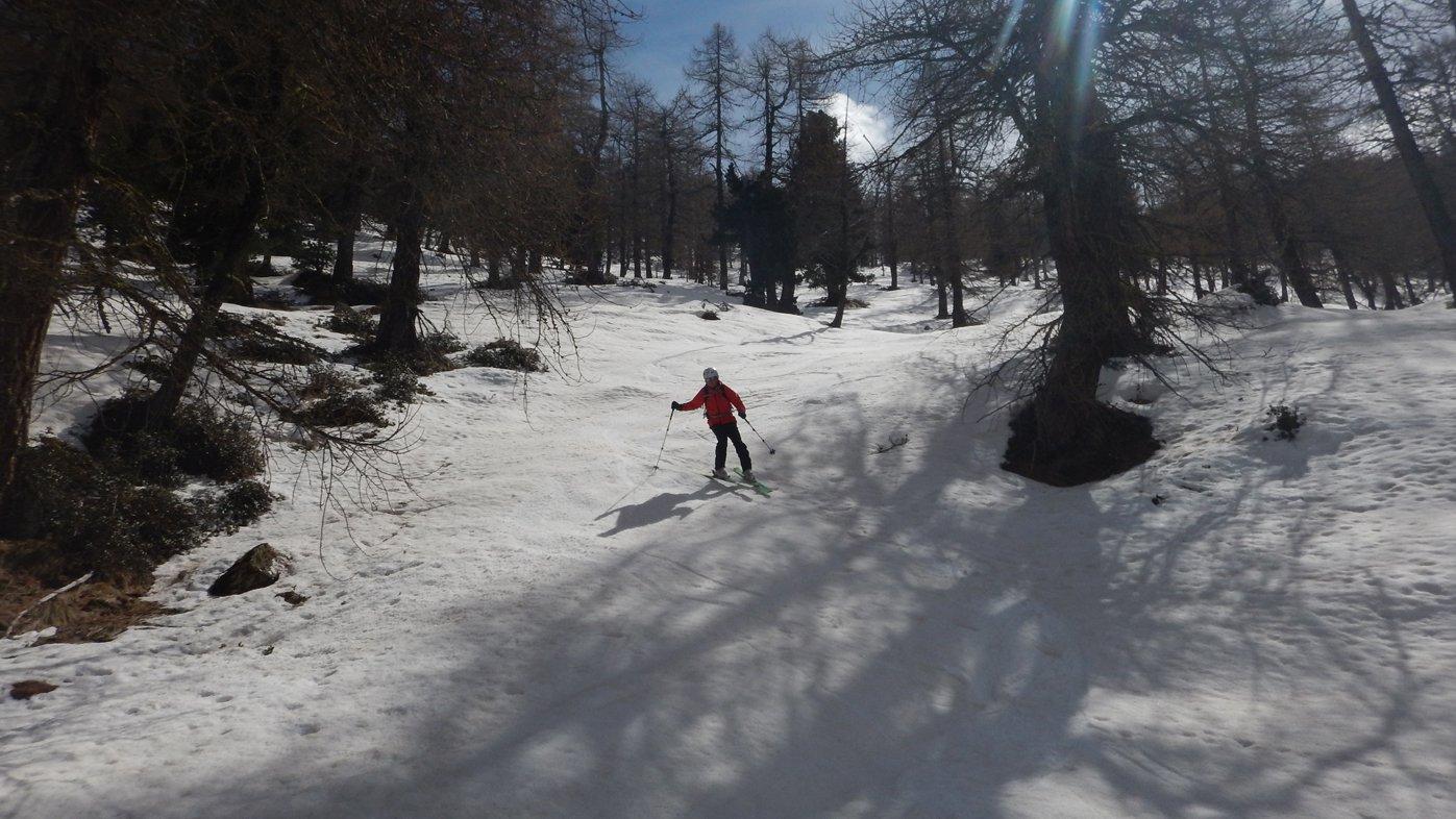 Ottima neve nel vallone a ovest della cresta di Naia