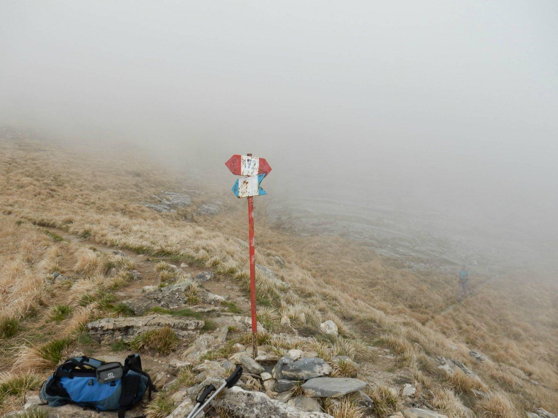 A foce Faggiola pur con visibilità ridotta decidiamo di salire al M.Sagro.