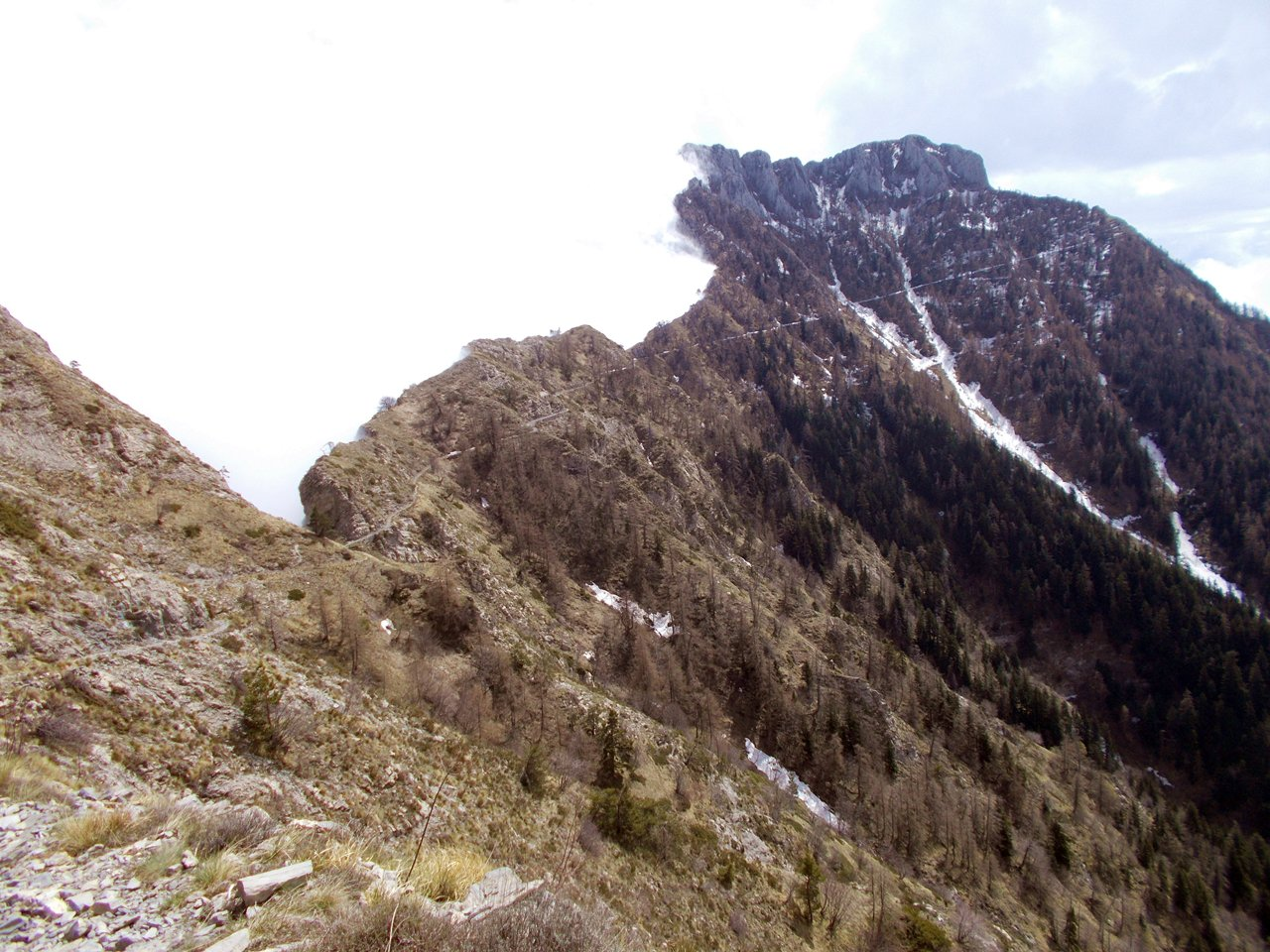 Monte Toraggio versante NE