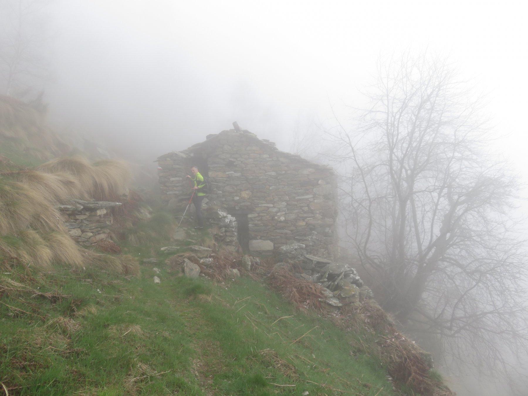 Entriamo nella nebbia