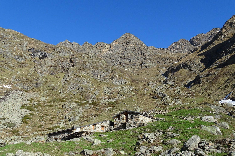 Alpe Piana d'Ovago