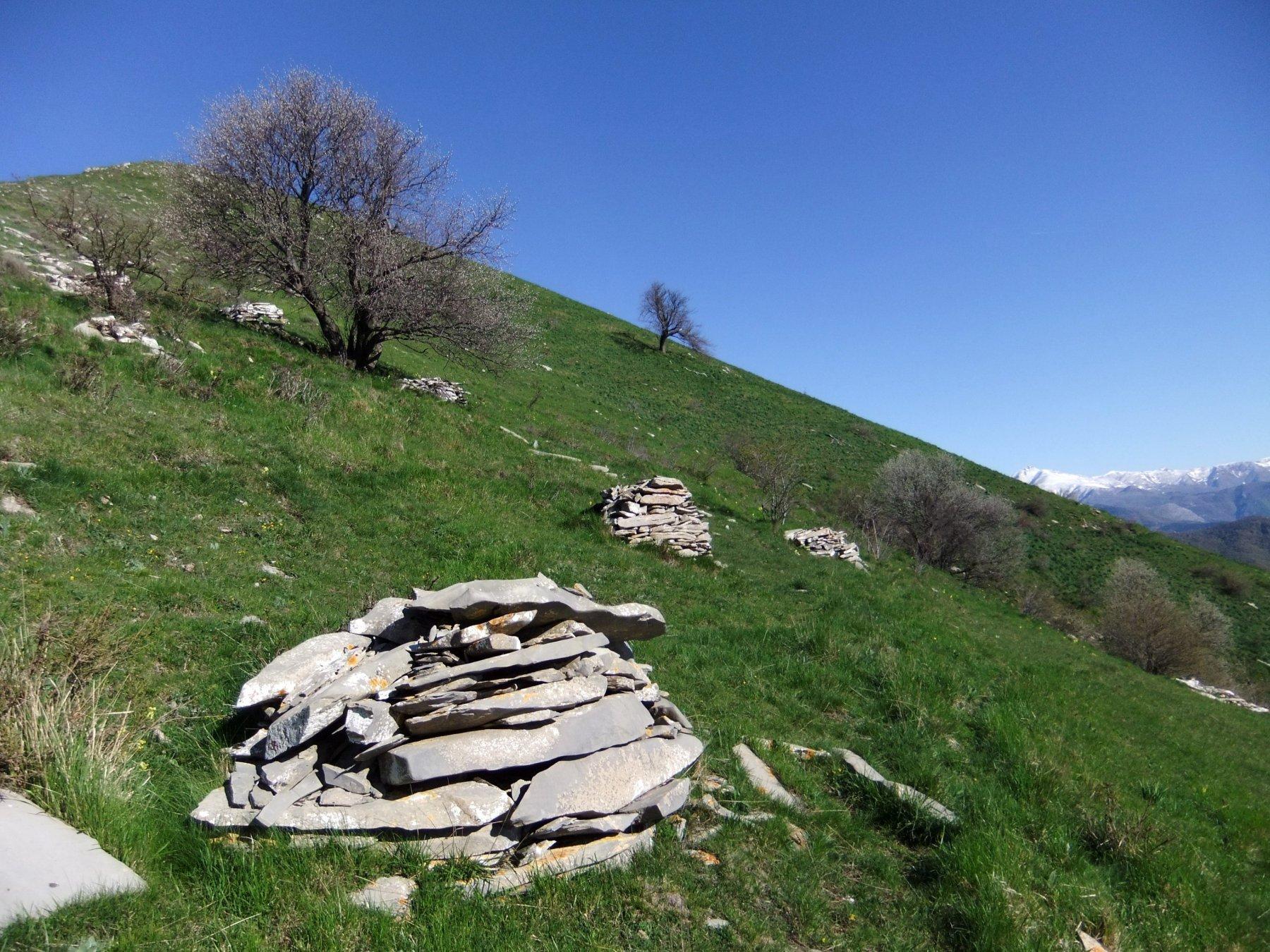 Mucchi di pietre sotto la vetta del Monte Grande