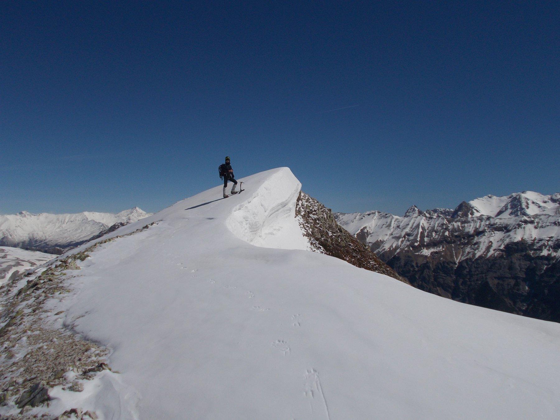 bella pinna nevosa al termine della cavalcata di cresta q.2586m..
