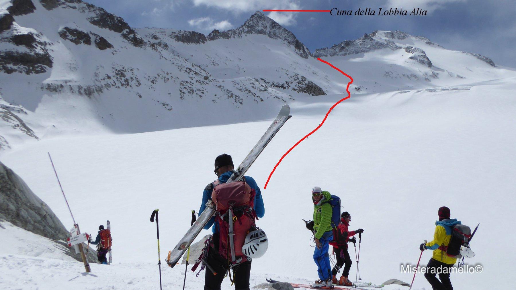 L itinerario visto dall 'ingresso del ghiacciaio del Mandrone (2600 m circa)