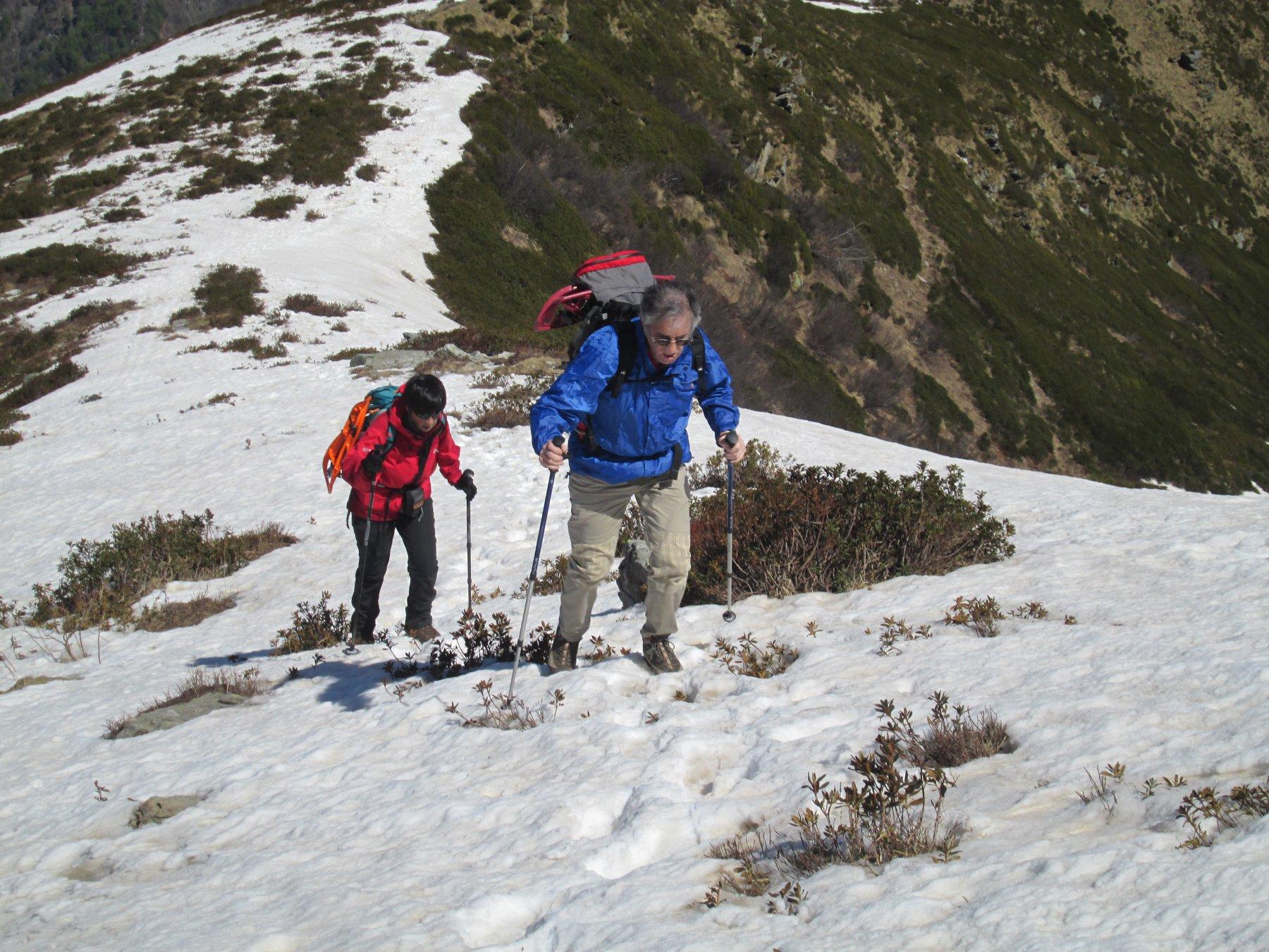 Tre Alpi (Testone dei) dalla Bocchetta dei Fornei traversata all'Alpe del Pizzo per monte Bò 2016-04-25