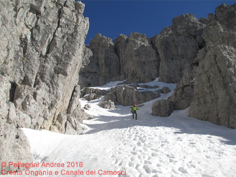 IMG_2088 Giorgio scendendo dal Canale dei Camosci