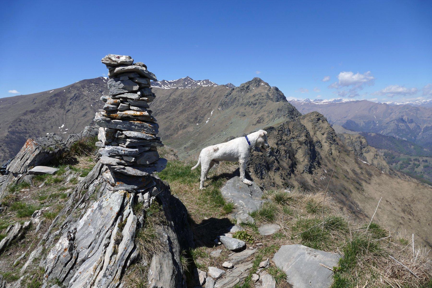 Ometto di vetta e Buck,sullo sfondo la Rocca Pergo piccola