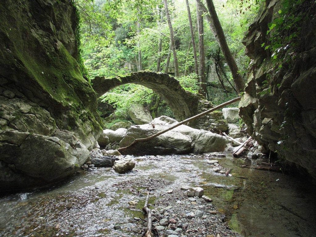 Ponte sul rio Gazzo