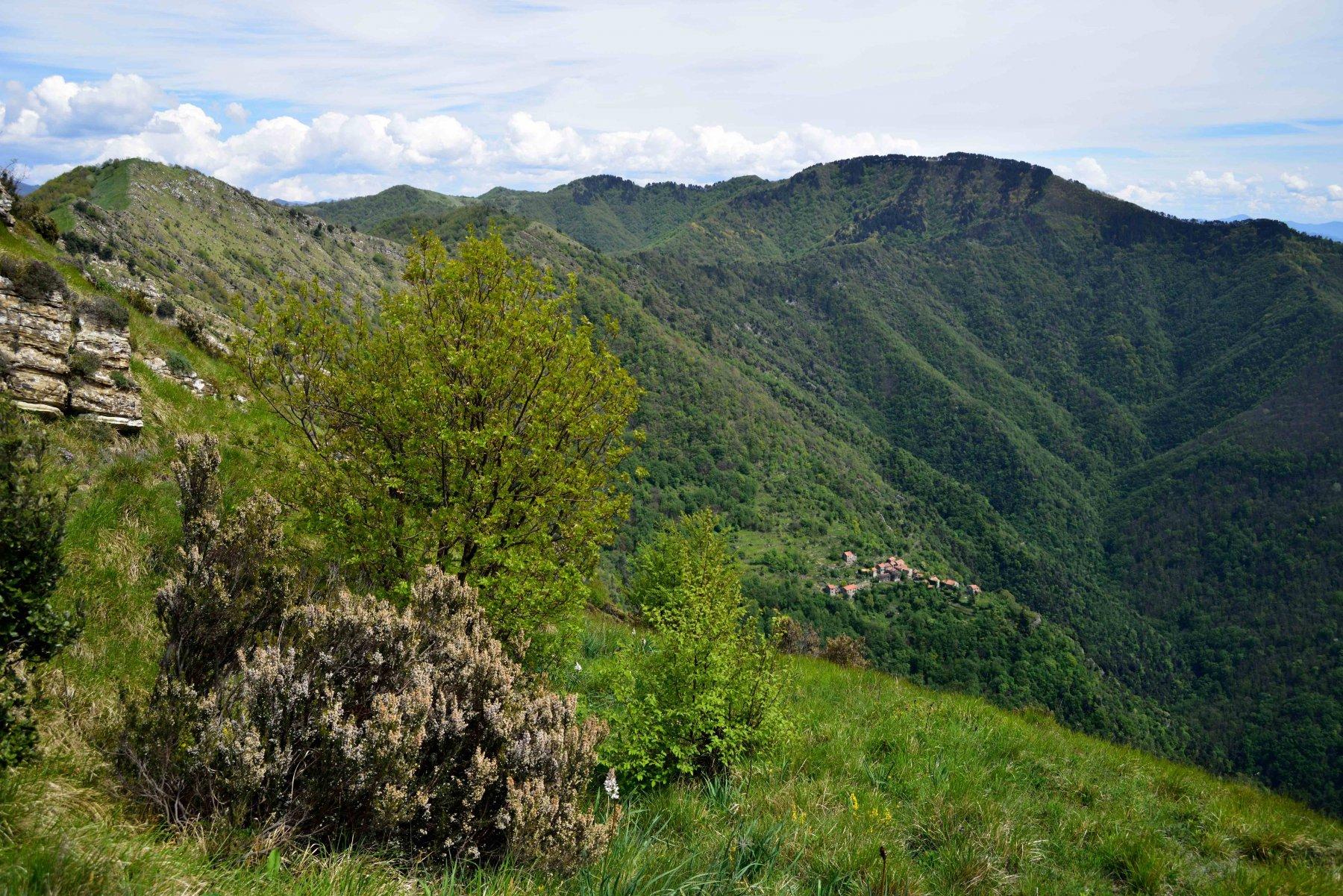 Alpesisa e Monte Lago da Prato, anello per Canate 2016-04-30