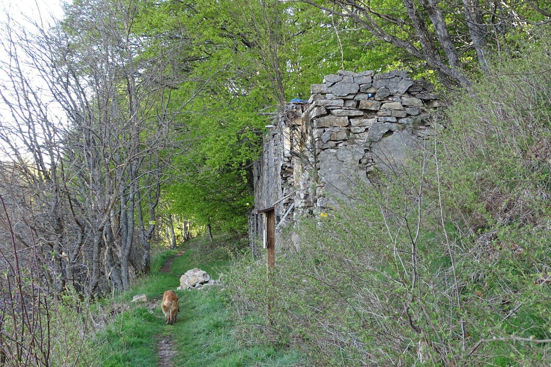 Casa del Piccetto