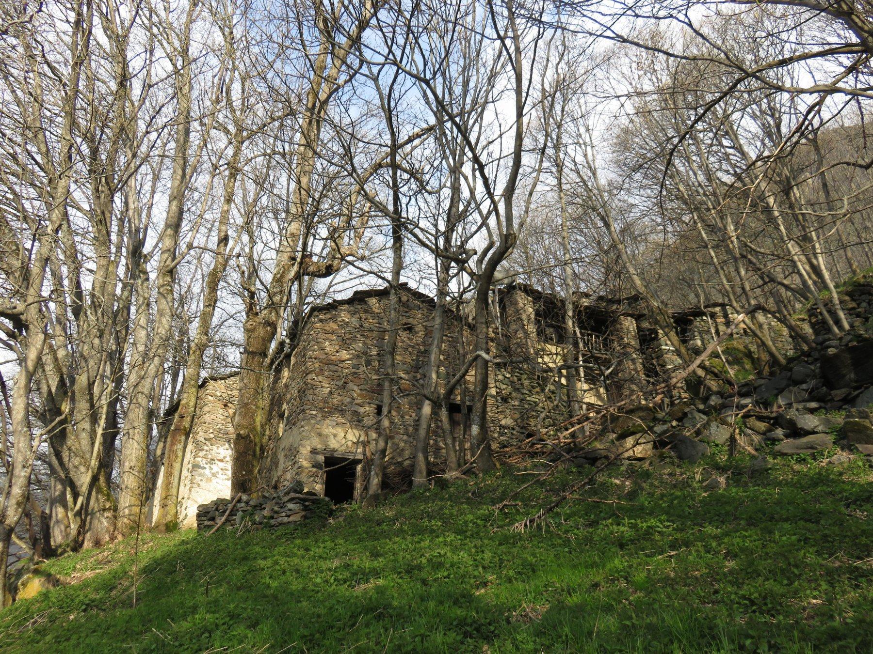 Borgo Maison
