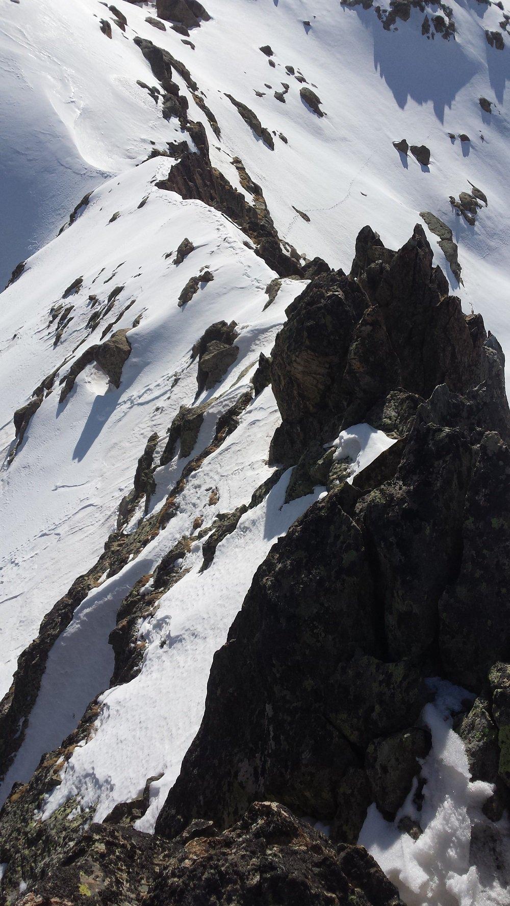 Il tratto di cresta che separa la cima dalla Forcella Est