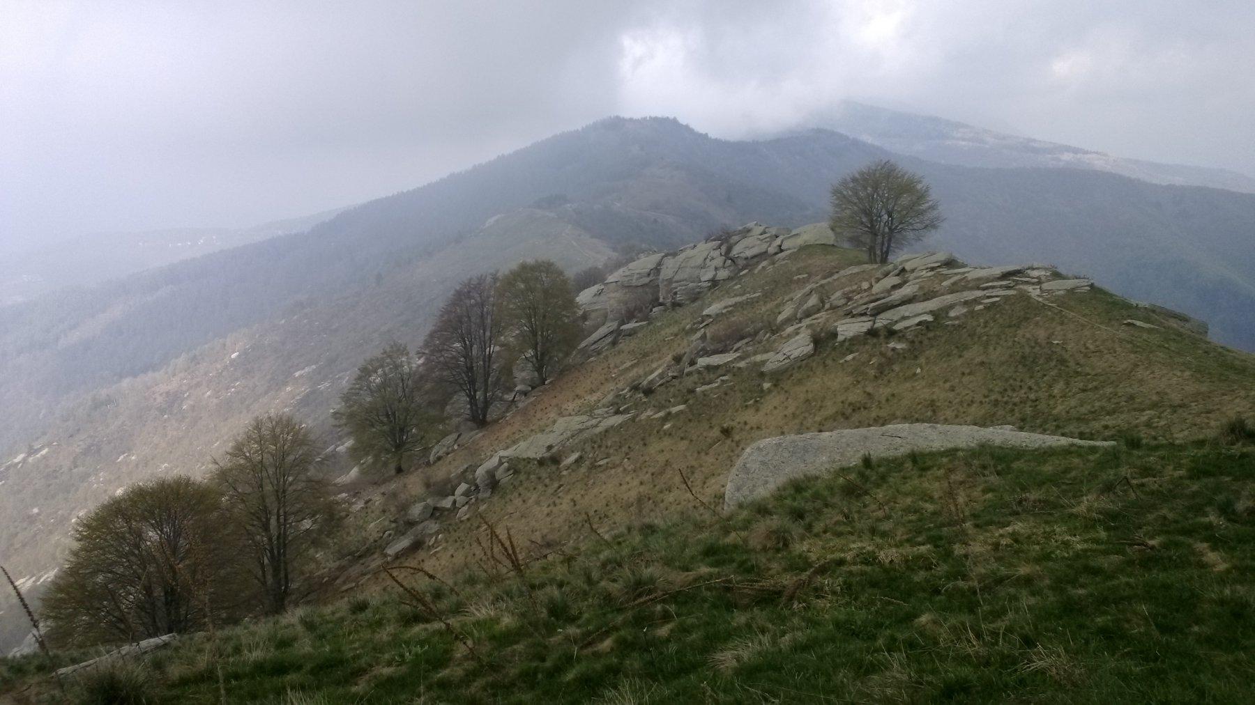 Roccerè (Monte) da Castello 2016-04-30