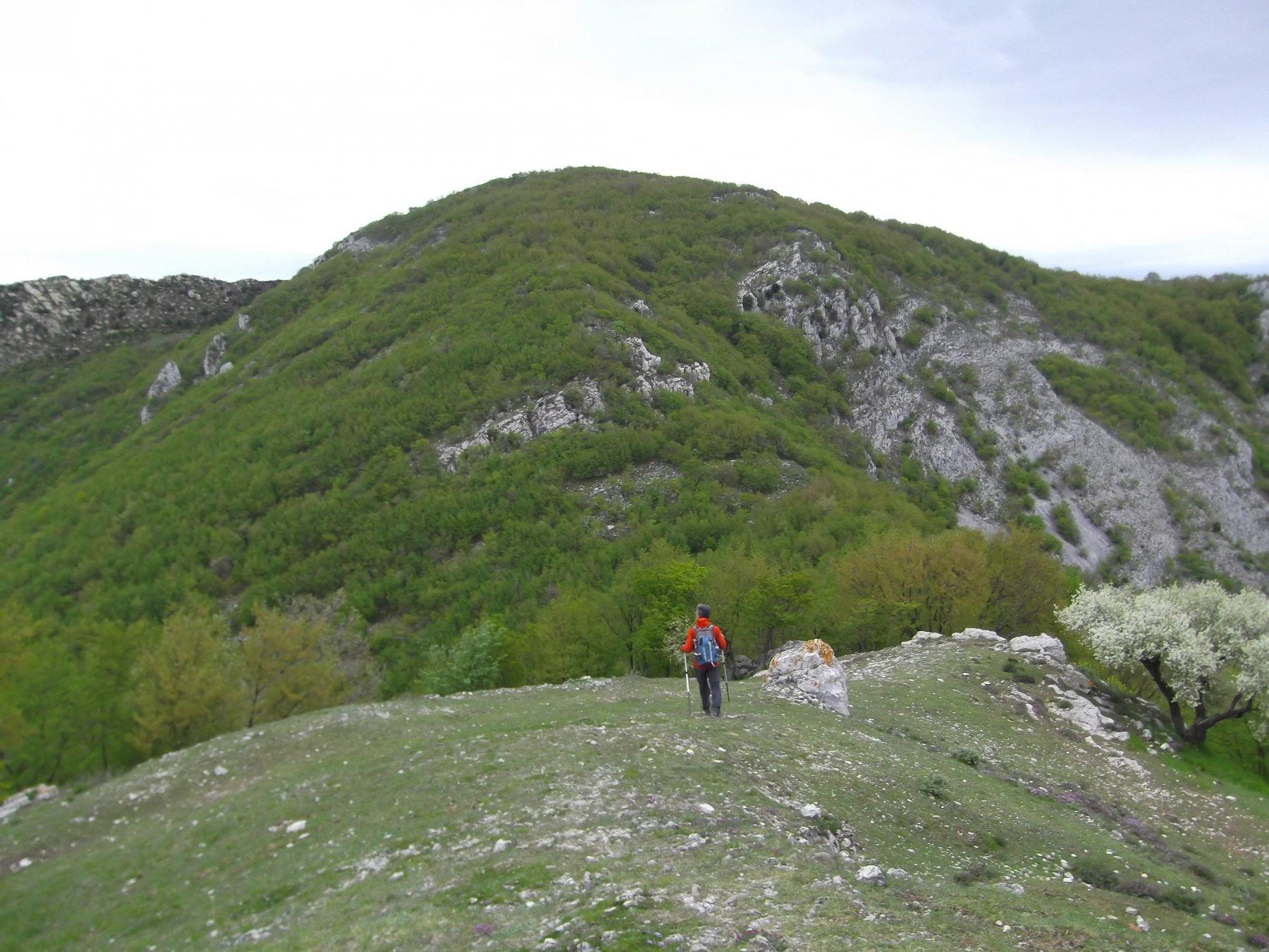 verso il Monte Ravinet