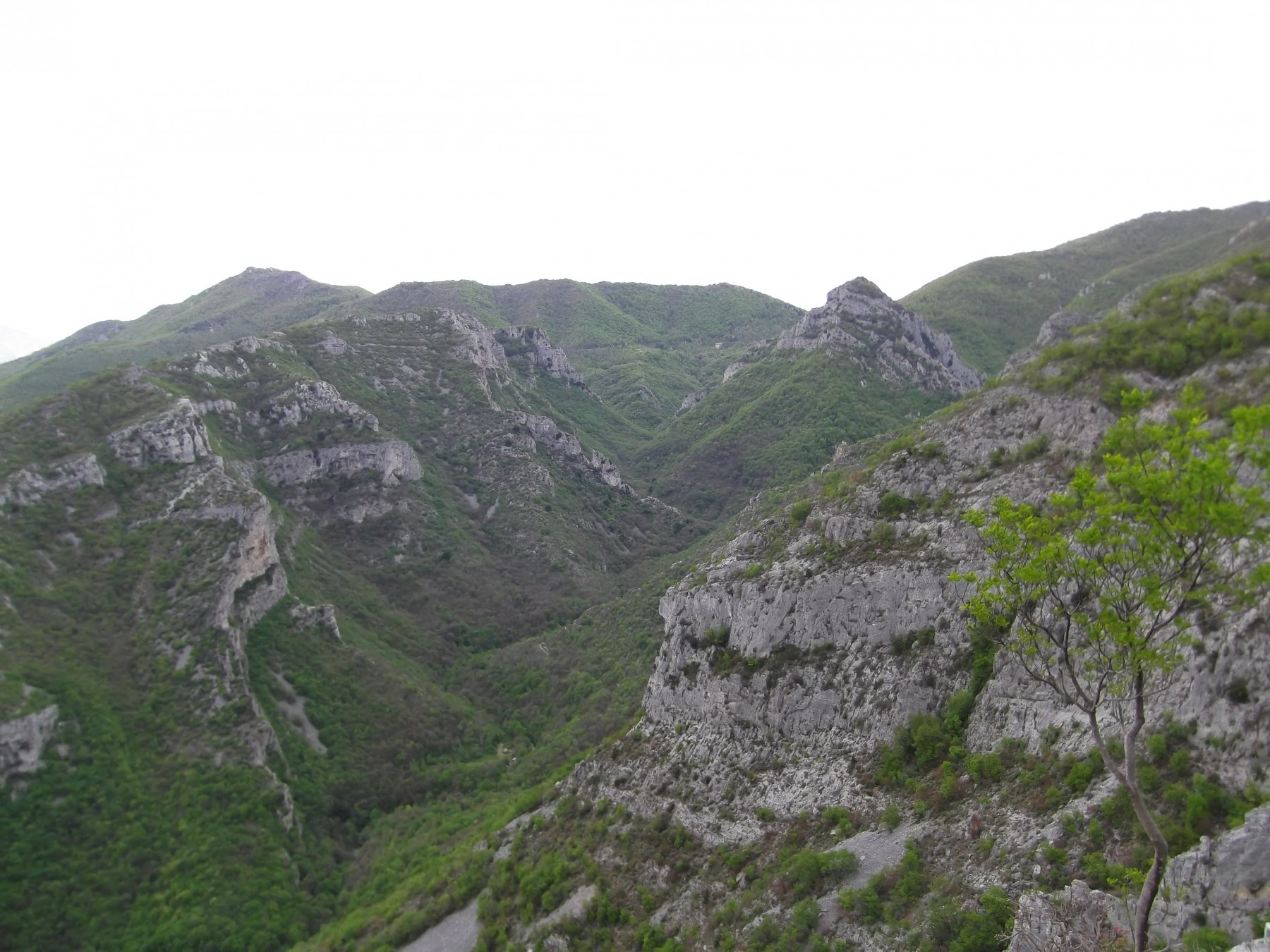 Rio della Valle visto dalla salita a San Pietro.