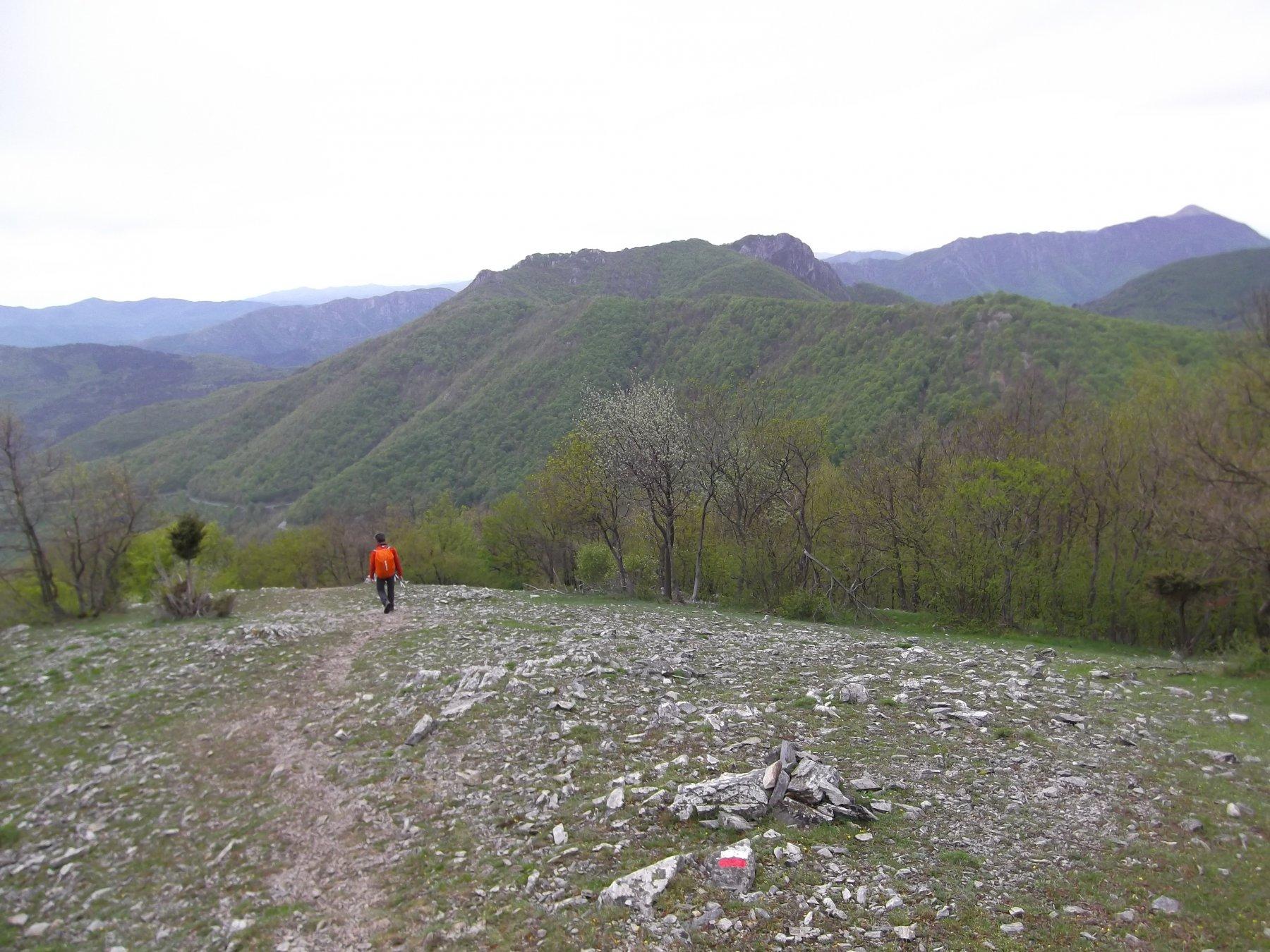 Carmo (Monte) dal Salto del Lupo, anello per Monte Ravinete Rio della Valle 2016-05-02