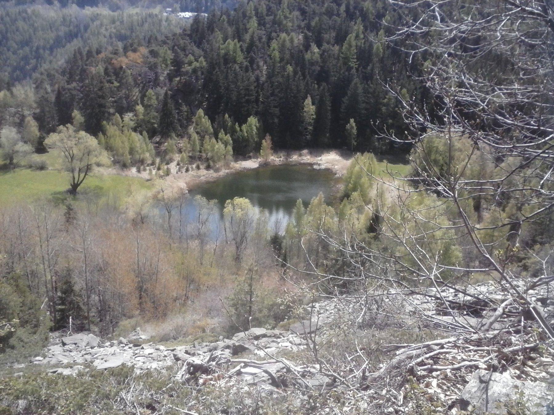 l'oasi naturale col laghetto ...
