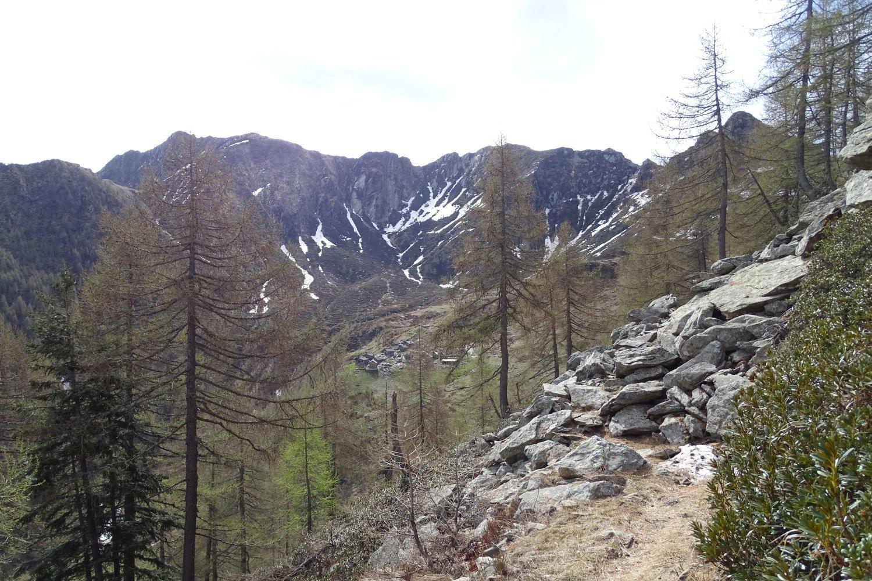 in vista dell'Alpe Cort di Sopra