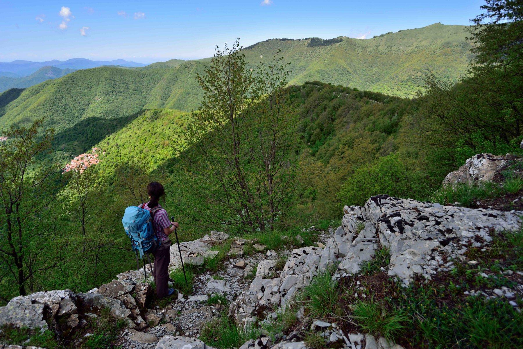 Antola (Monte) e Monte Cremadoda Tonno, anello per Mulino di Chiappa Crosa 2016-05-15