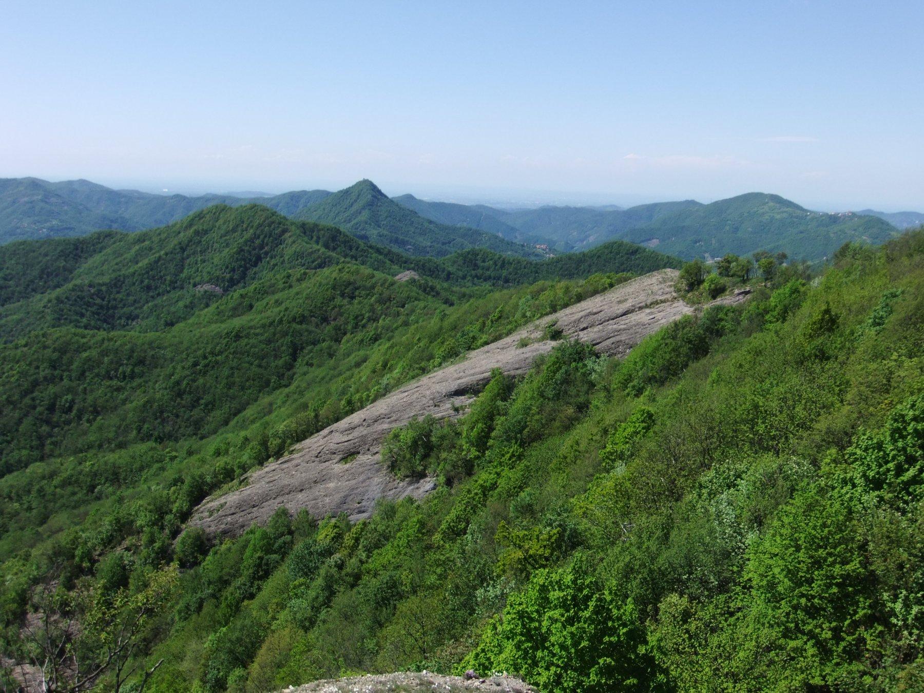 Reale (Monte) da Crocefieschi, per Rocche del Reopasso 2016-05-15