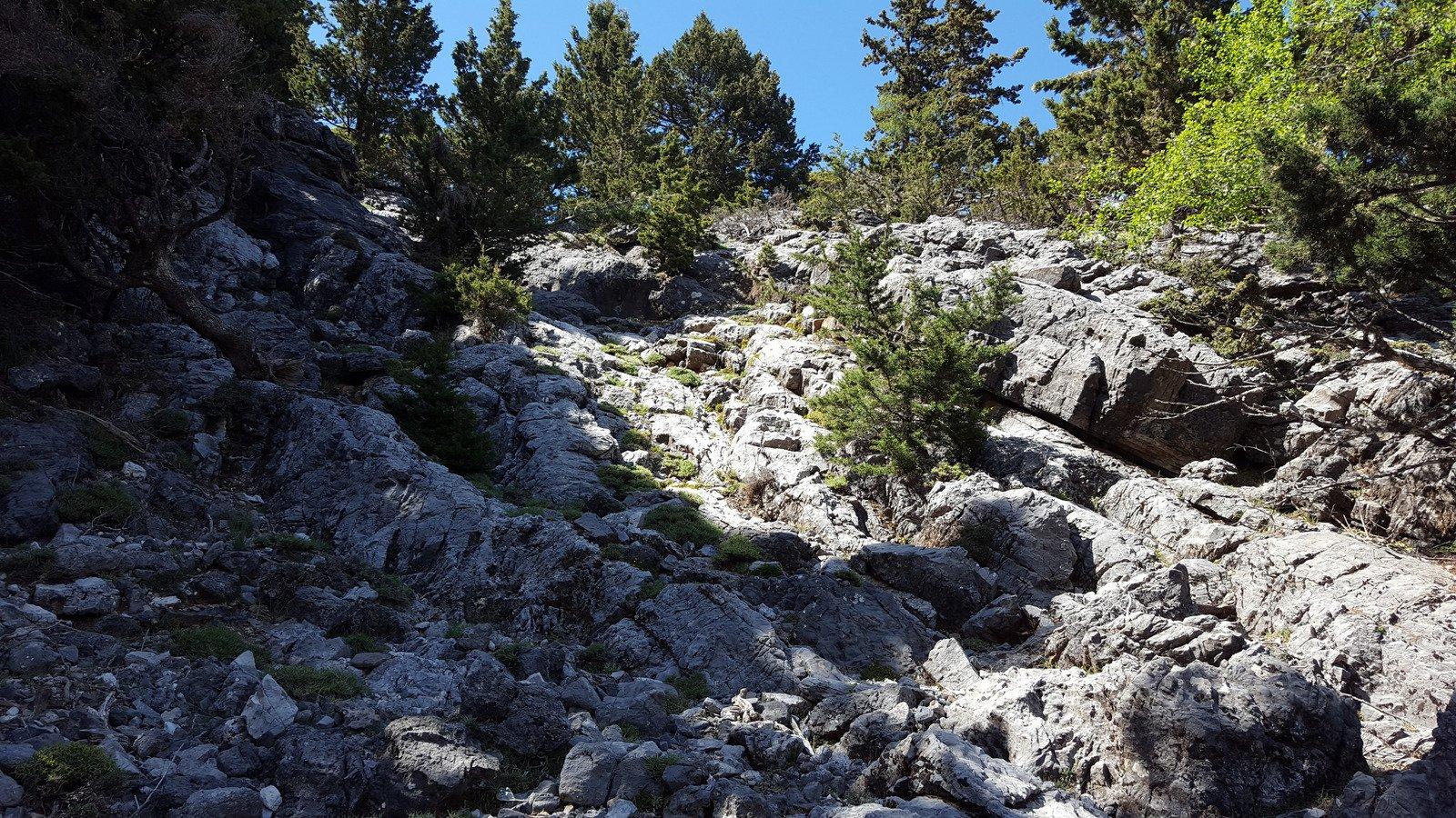 L'ultimo tratto della valletta prima di incrociare il sentiero da Skafidaki.