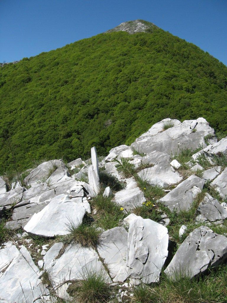 Monte Saben dalla Cima Roccaston