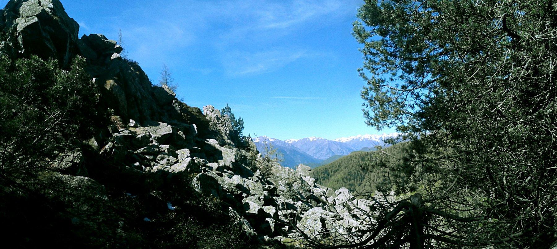 Alpe (l') o Alpe di Rittana da Valloriate, anello perColle dell'Ortiga e Chiotti 2016-05-21