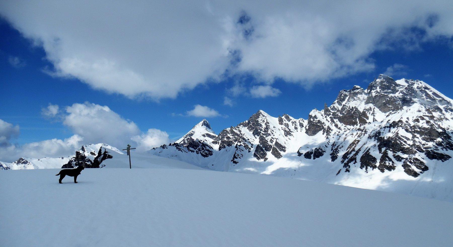 Cazzola (Monte) da Alpe Devero 2016-05-25