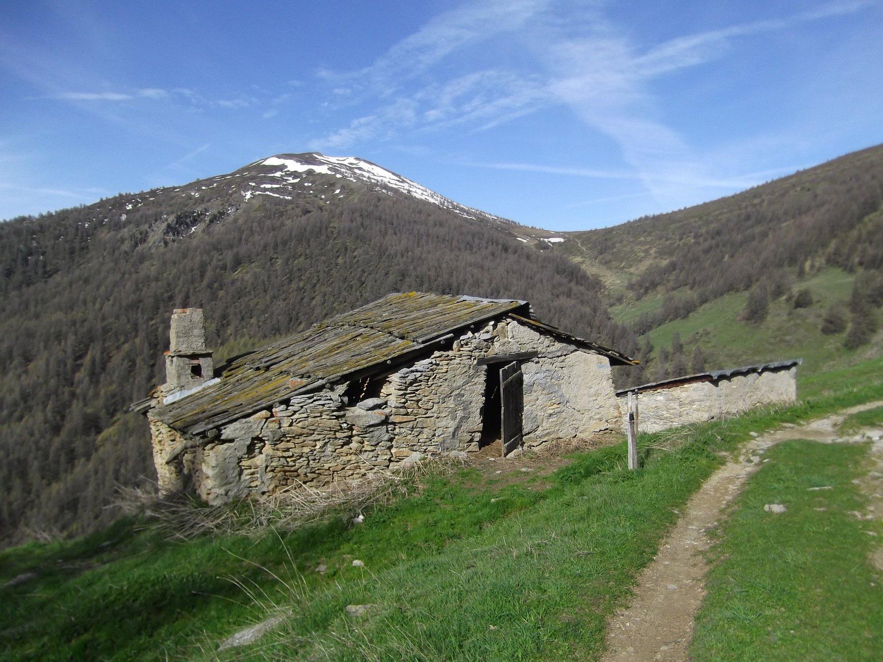 Punta Moncrons dall'Alpe Giarasson.
