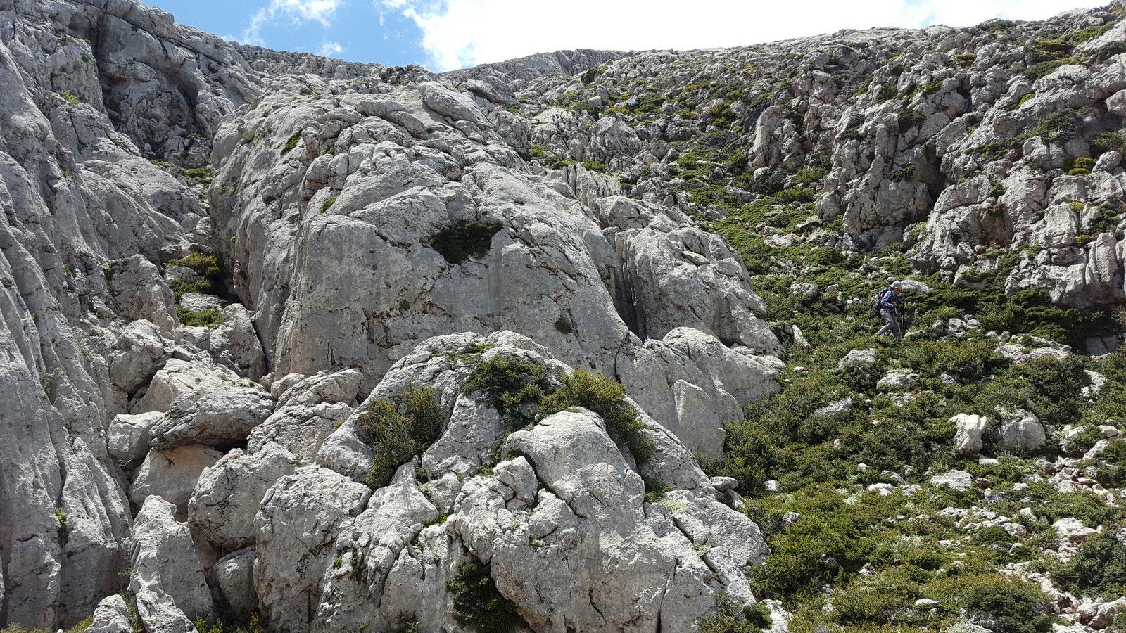 Il canale di rocce e arbusti spinosi percorso in discesa.