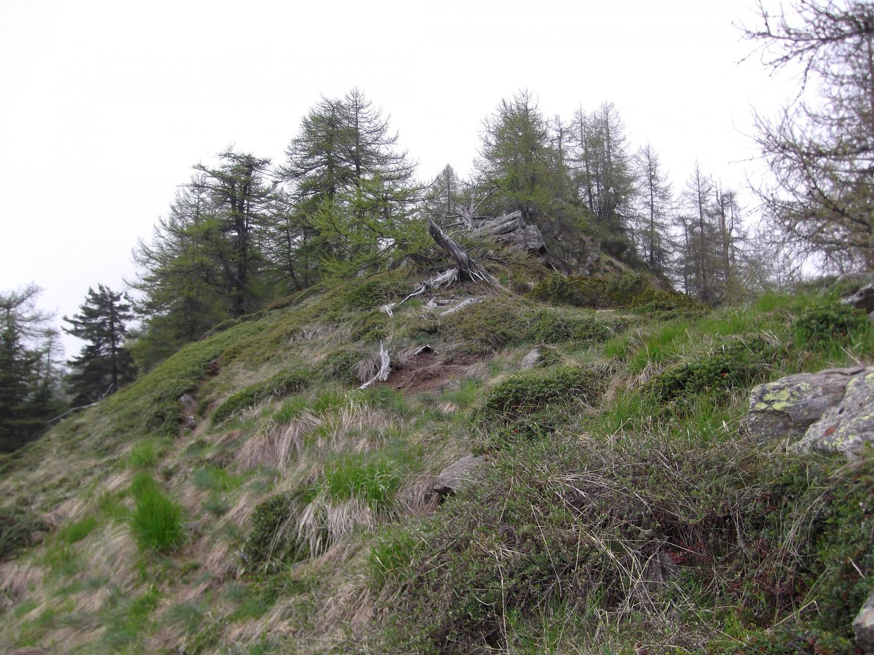 La cresta di salita dopo il Colle della Buffa.