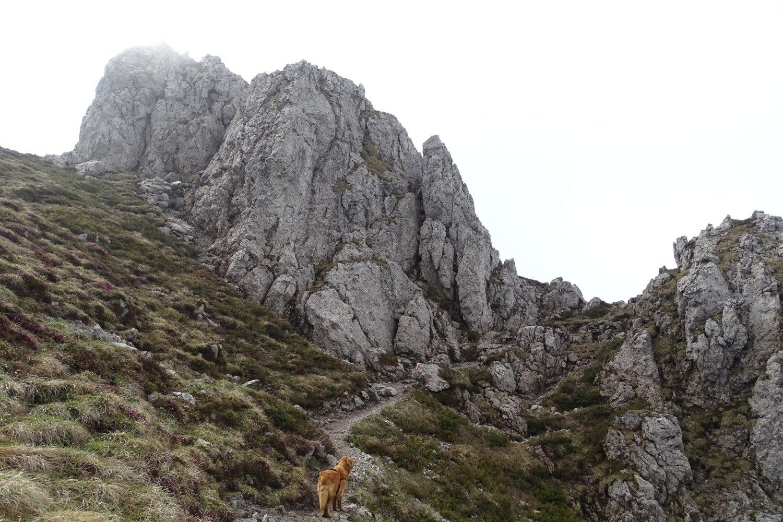 un suggestivo tratto di sentiero verso la cima dell'Alben