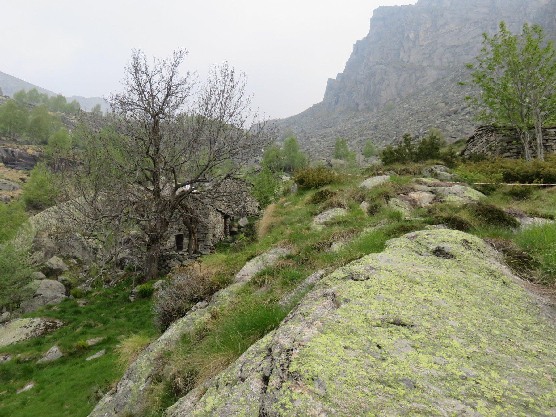 Alpe o Case Orti