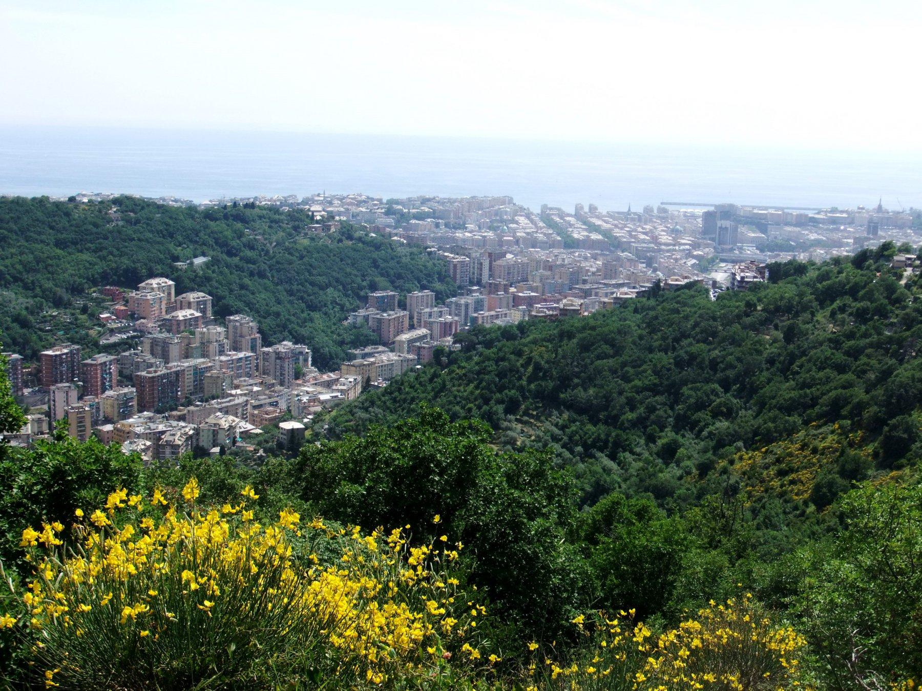 Panorama dal crinale