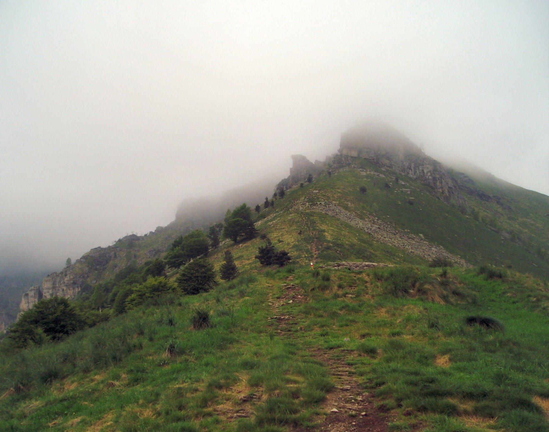 Gianna (Punta di) e Cugn dell'Alpet da Prese Damon, anello per i Monti Paletto, Muretto, Cristetto 2016-05-31