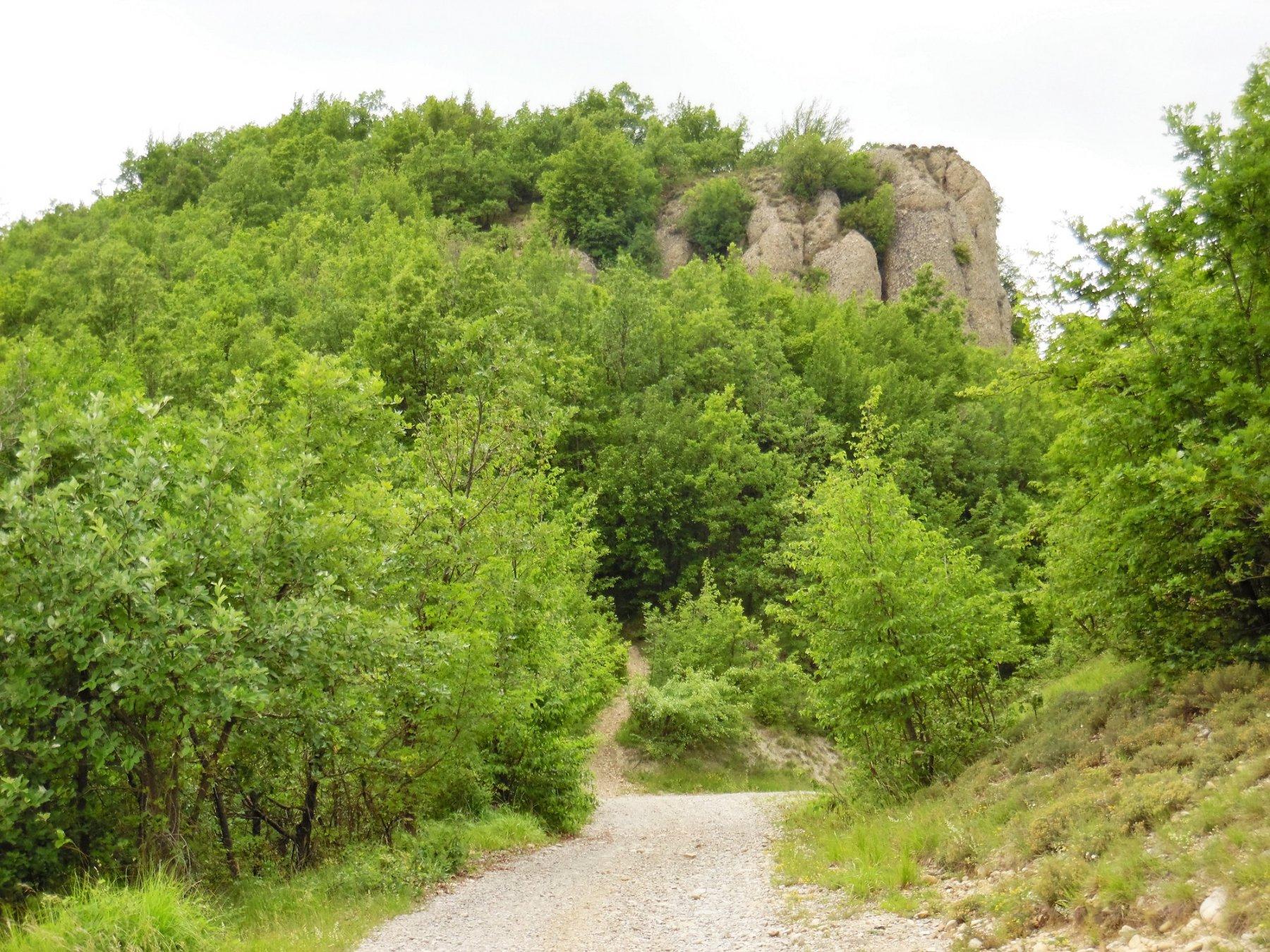 Monte Barilaro