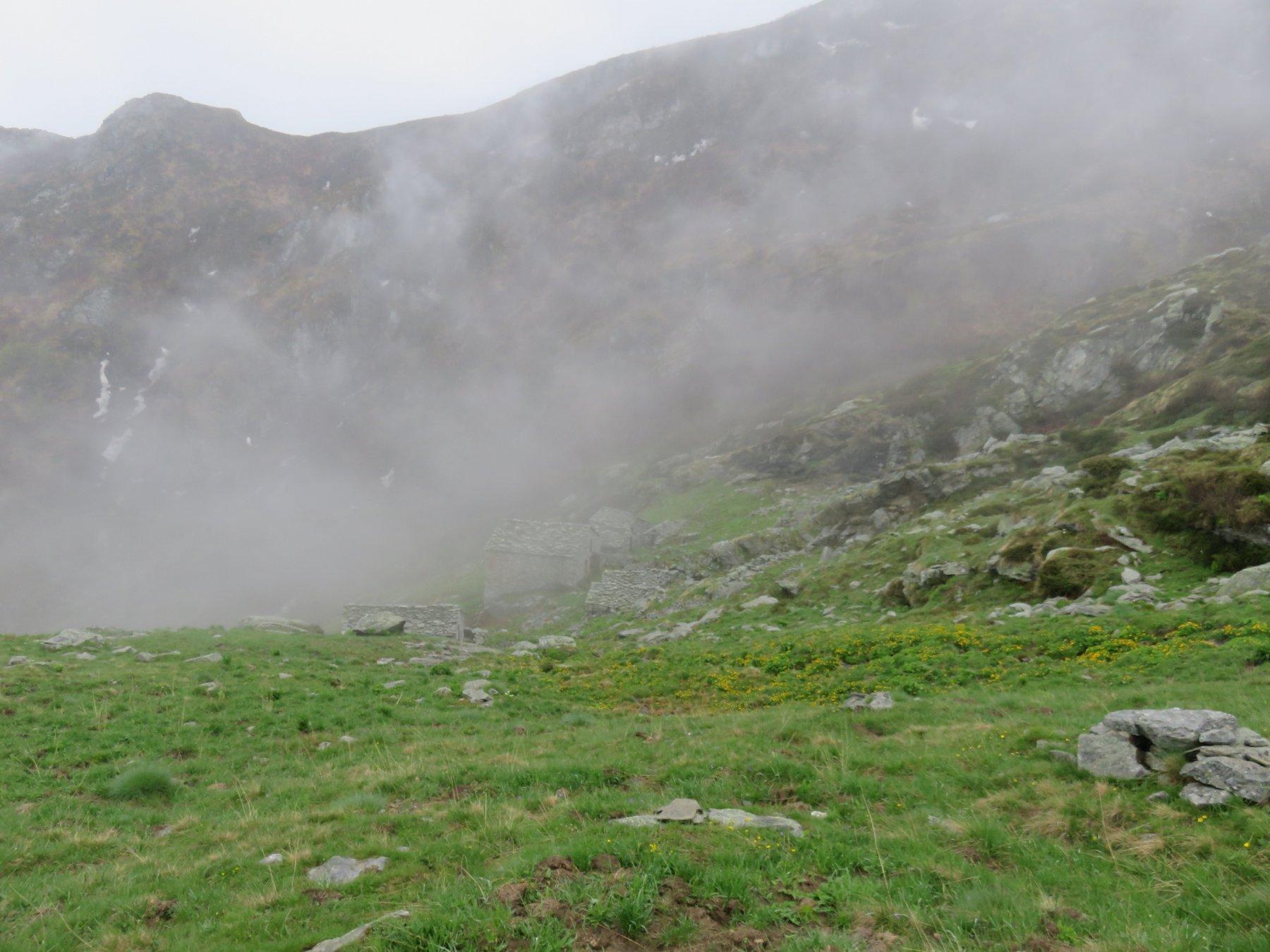 Alpi Gias Milone