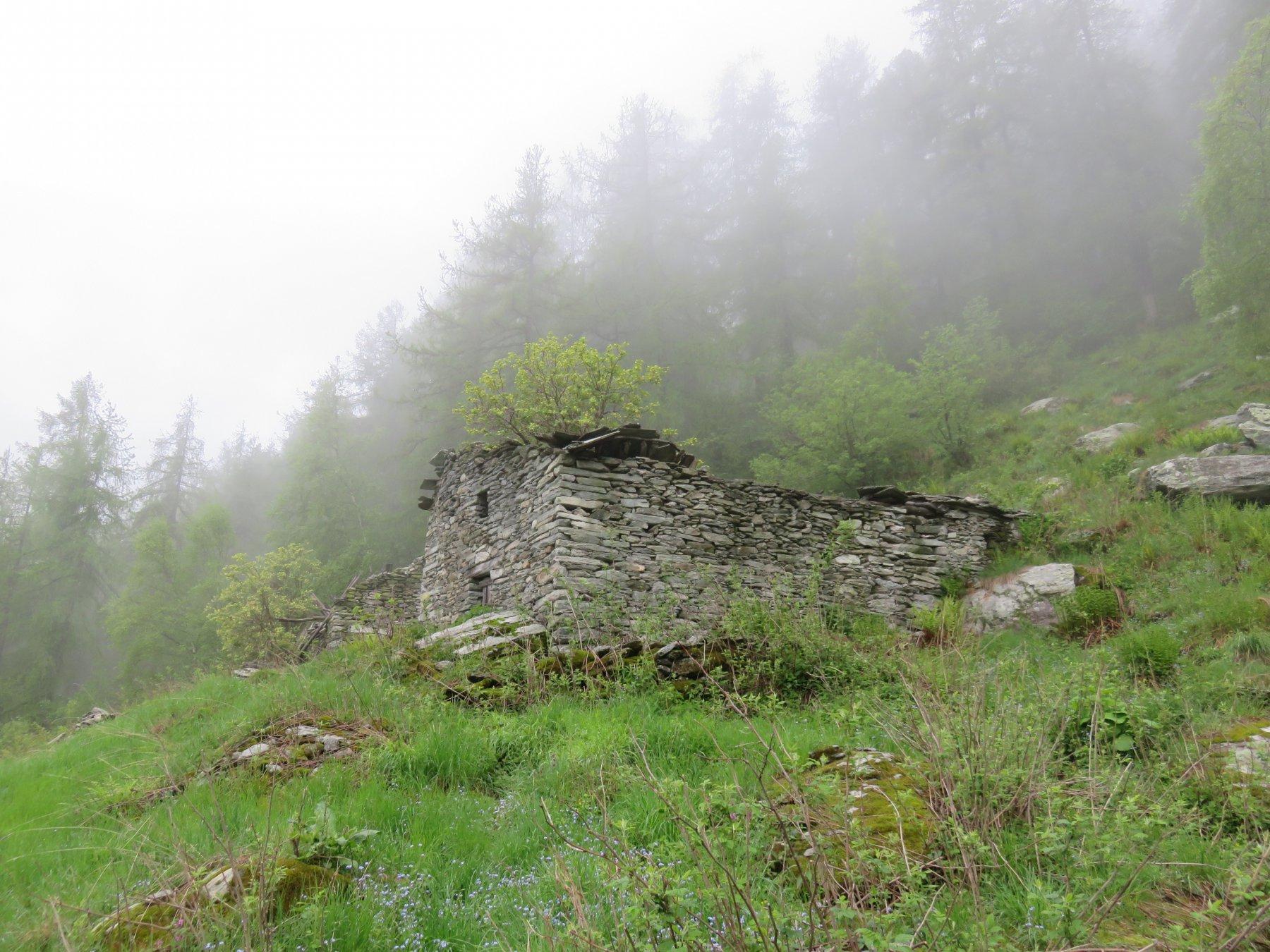 Alpe Gaschi