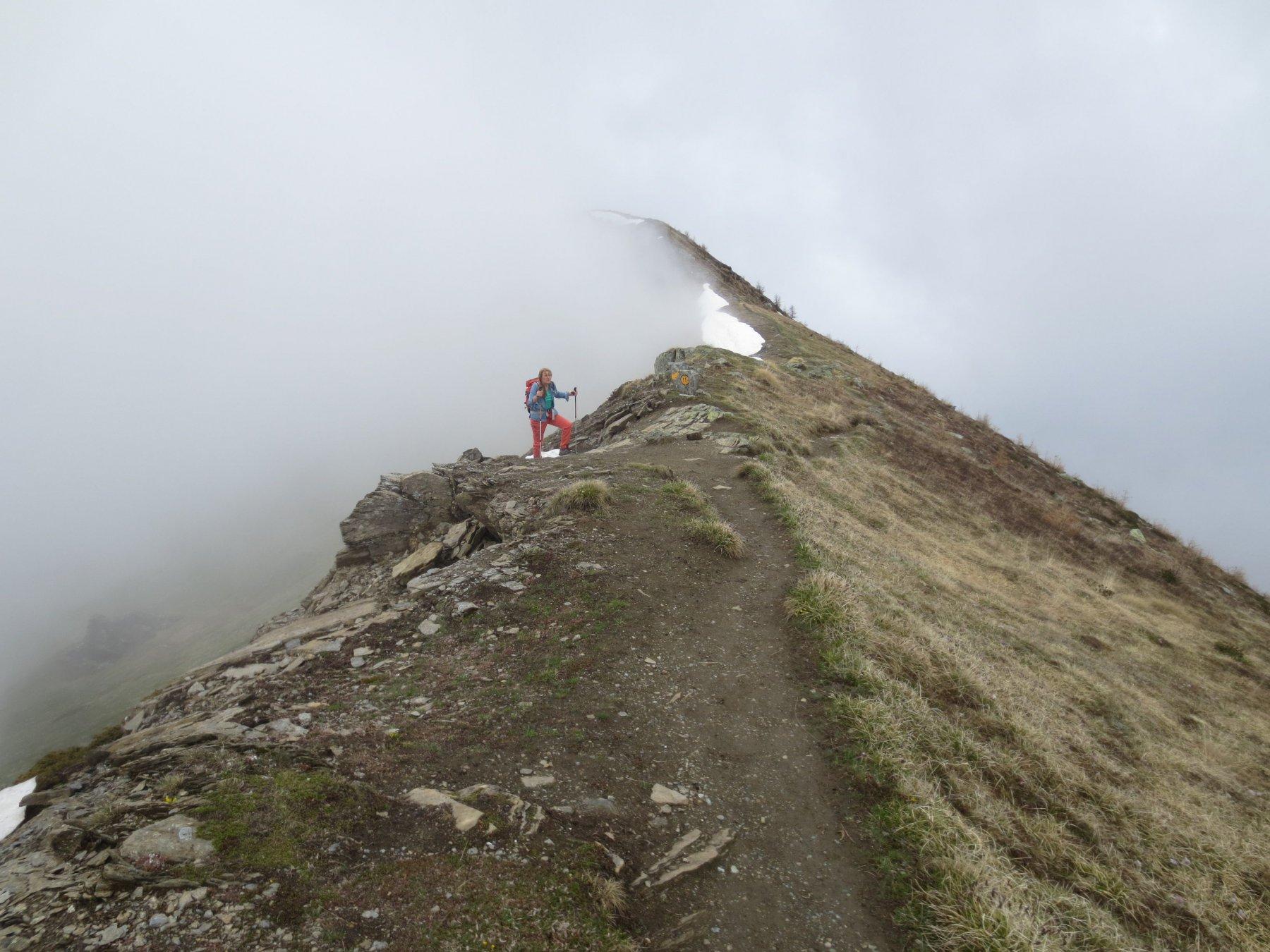 Sulla cresta tra la becca d'Aver e la cima Longhede, nella nebbia