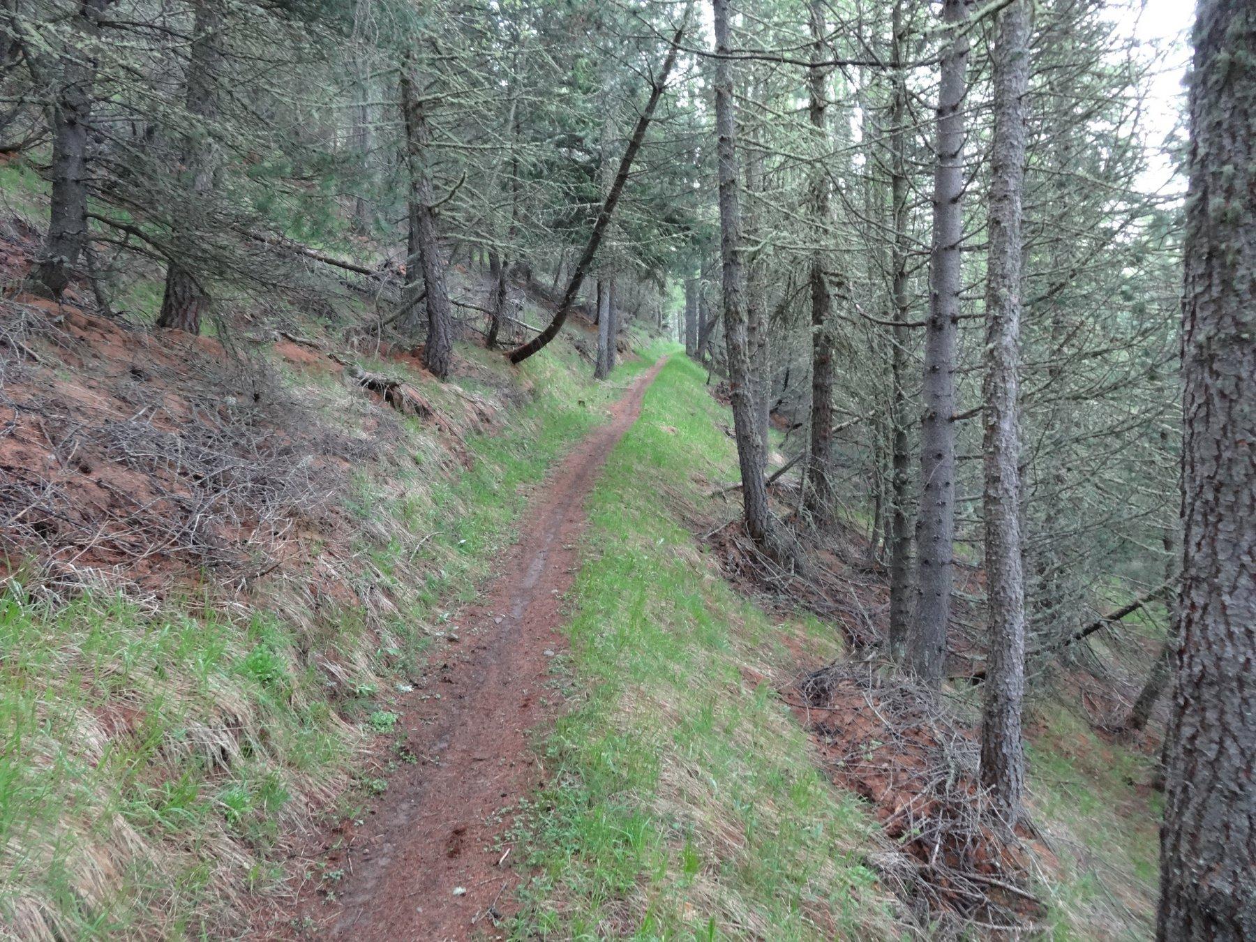 lo splendido sentiero 7b