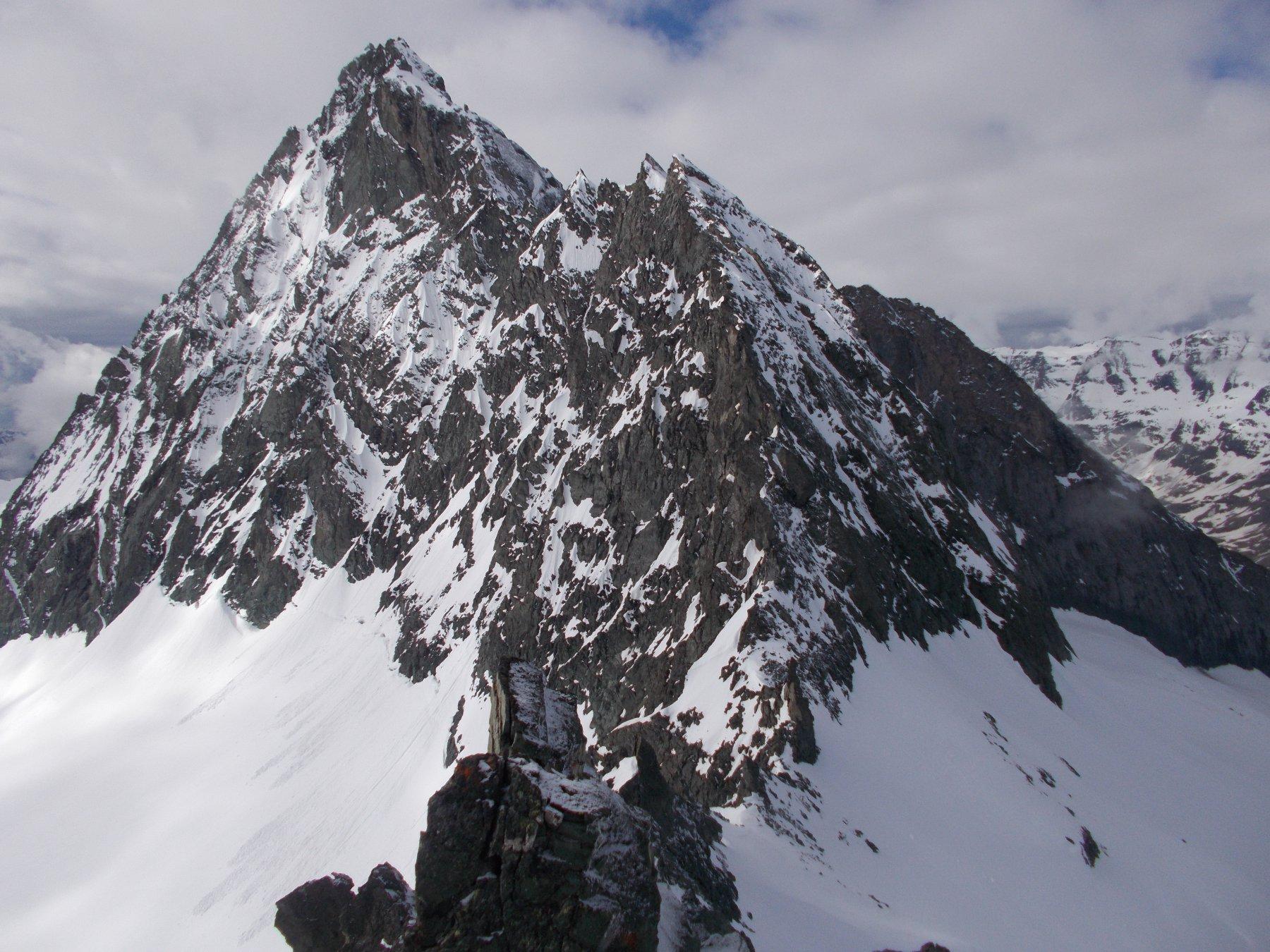 La Bessanese con la sua cresta nord..in basso al centro il Colle della Bessanese dal dente meridionale del Collerin..