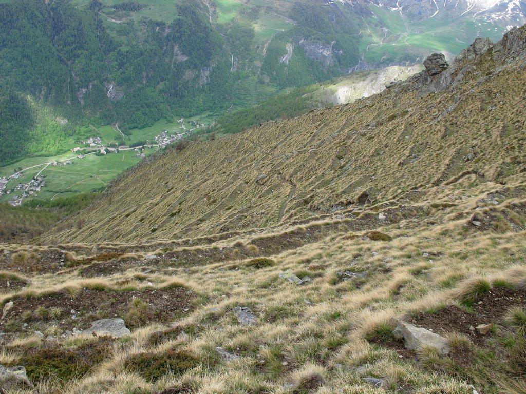 I terrazzamenti anti-valanghe sotto il Faceballa e l'AV1 che si allontana verso il costone