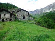Alpe Berrio desot e, nel verde a destra la macchia biance dell'alpe Berrio damon