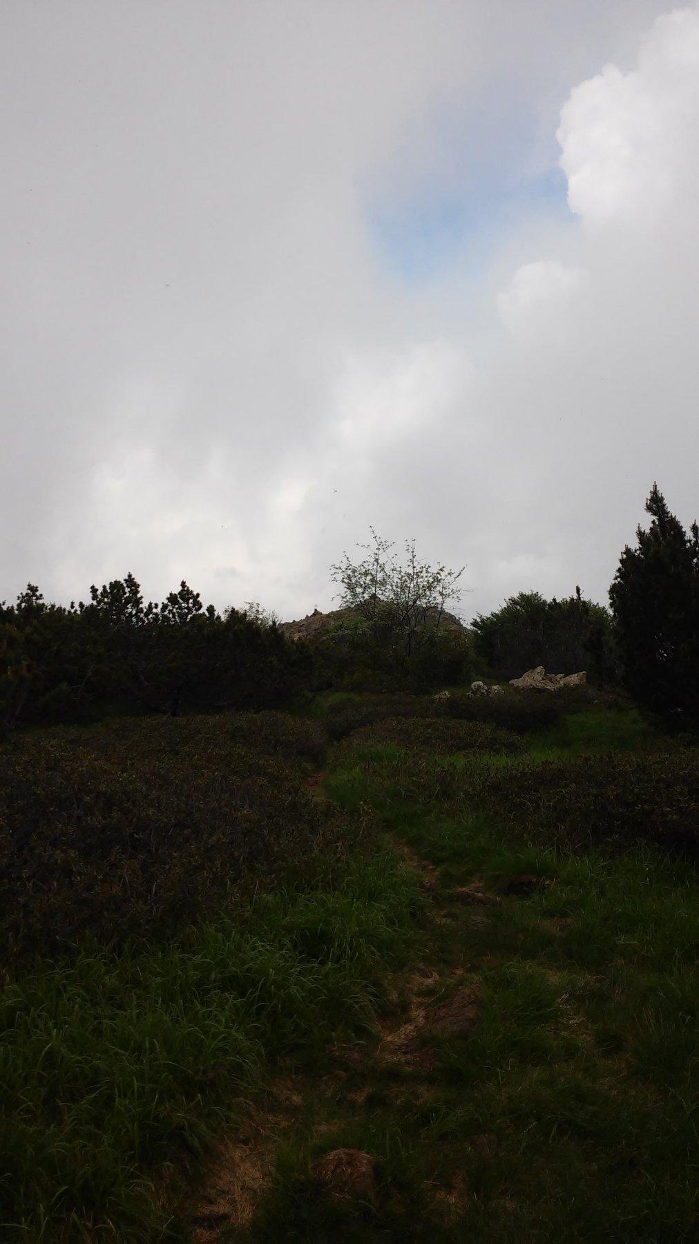 Ultimo tratto, si vede la vetta del Monte Arpone mt.1603