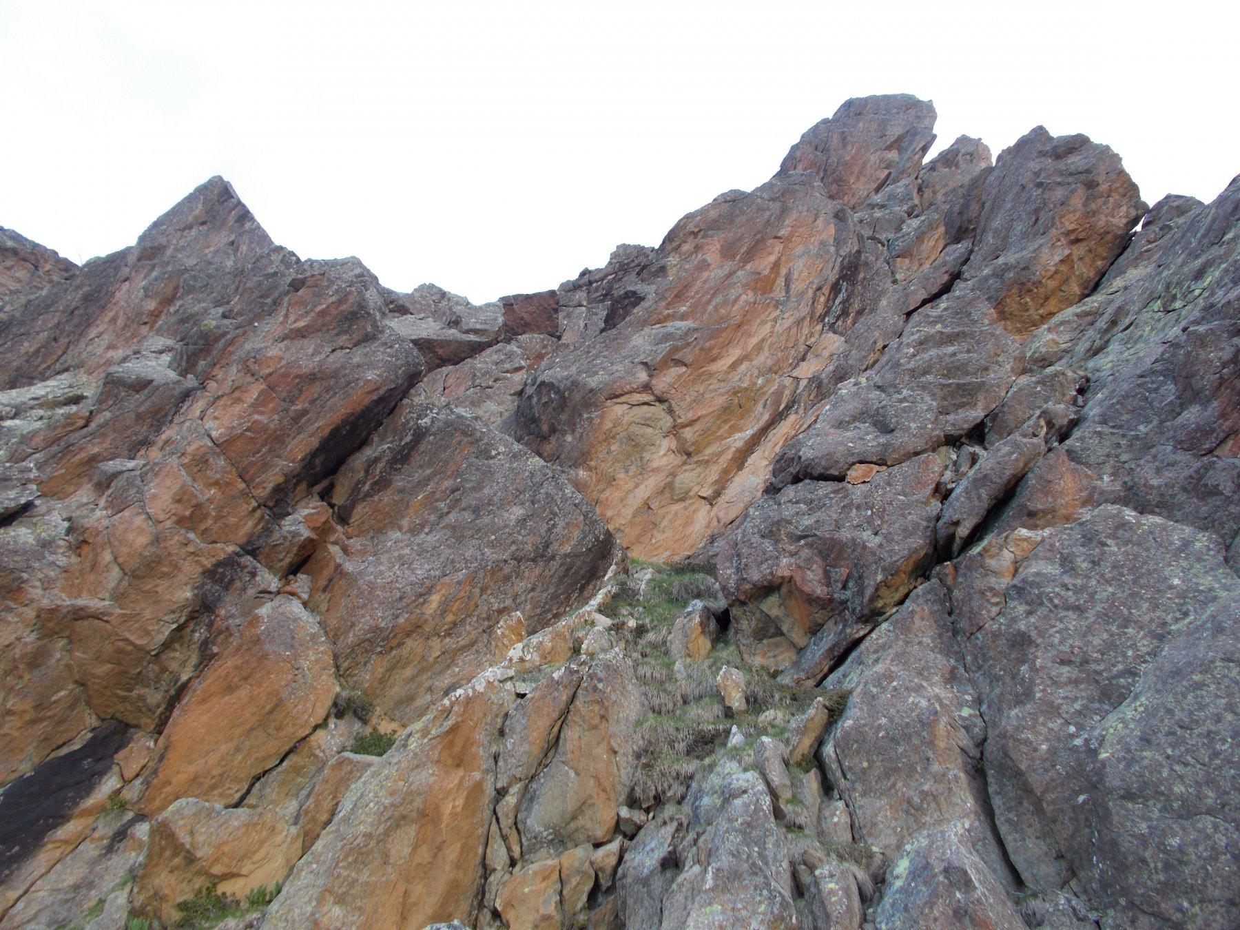 una sezione della cresta..