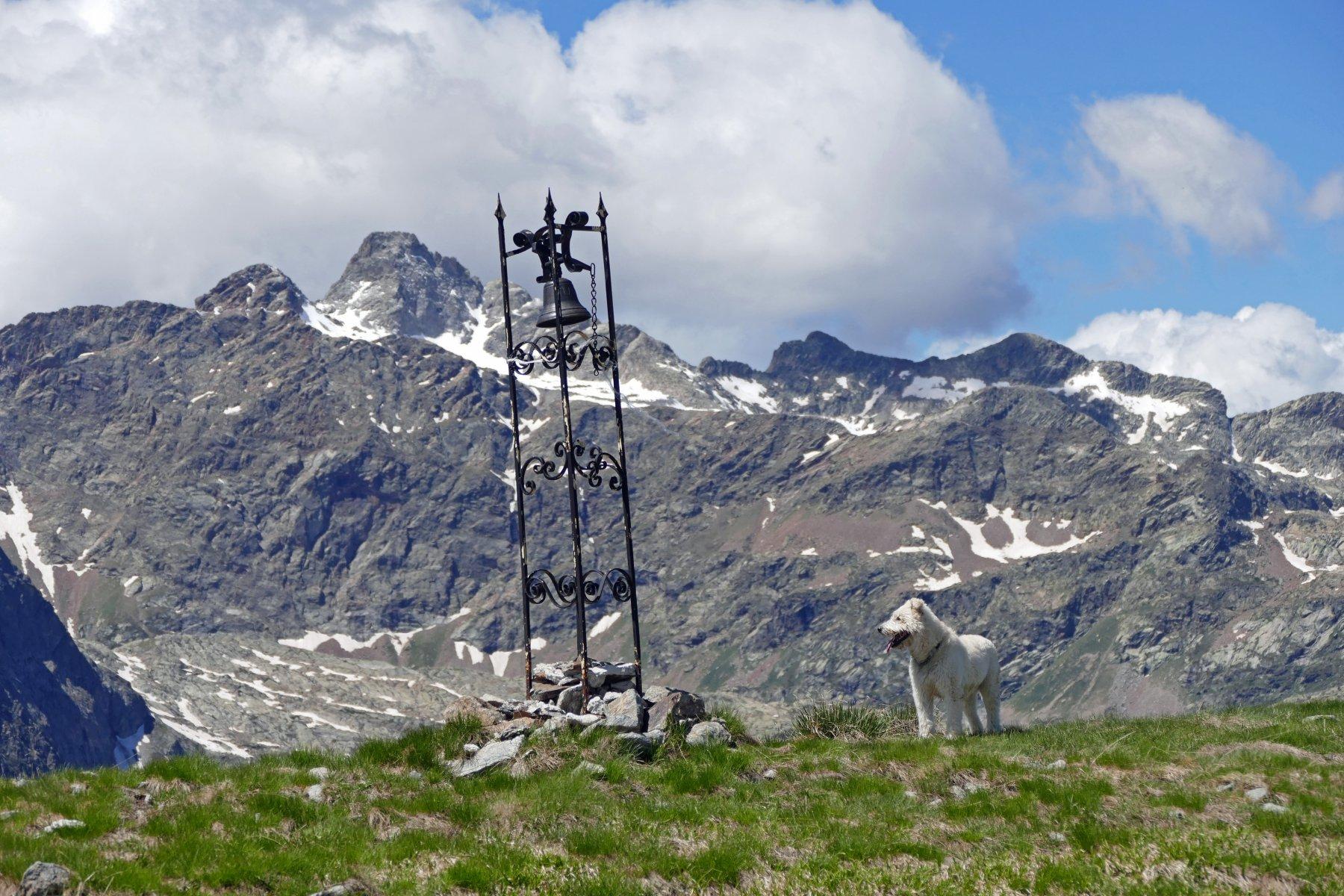 La singolare campana in vetta e Buck,sullo sfondo Rocca la Paur